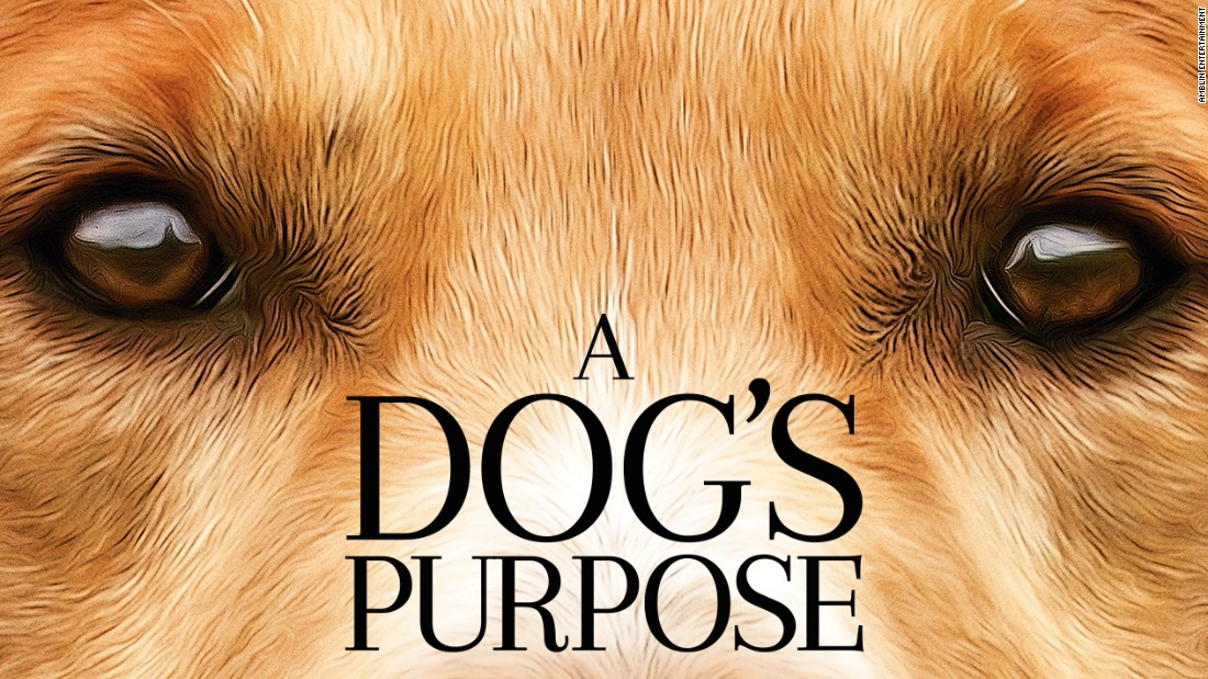 A Dog's Purpose –  (Rated PG 100 minutes) Directed by Lasse Hallström ★★★ – Reviewed by Yulia Podrul