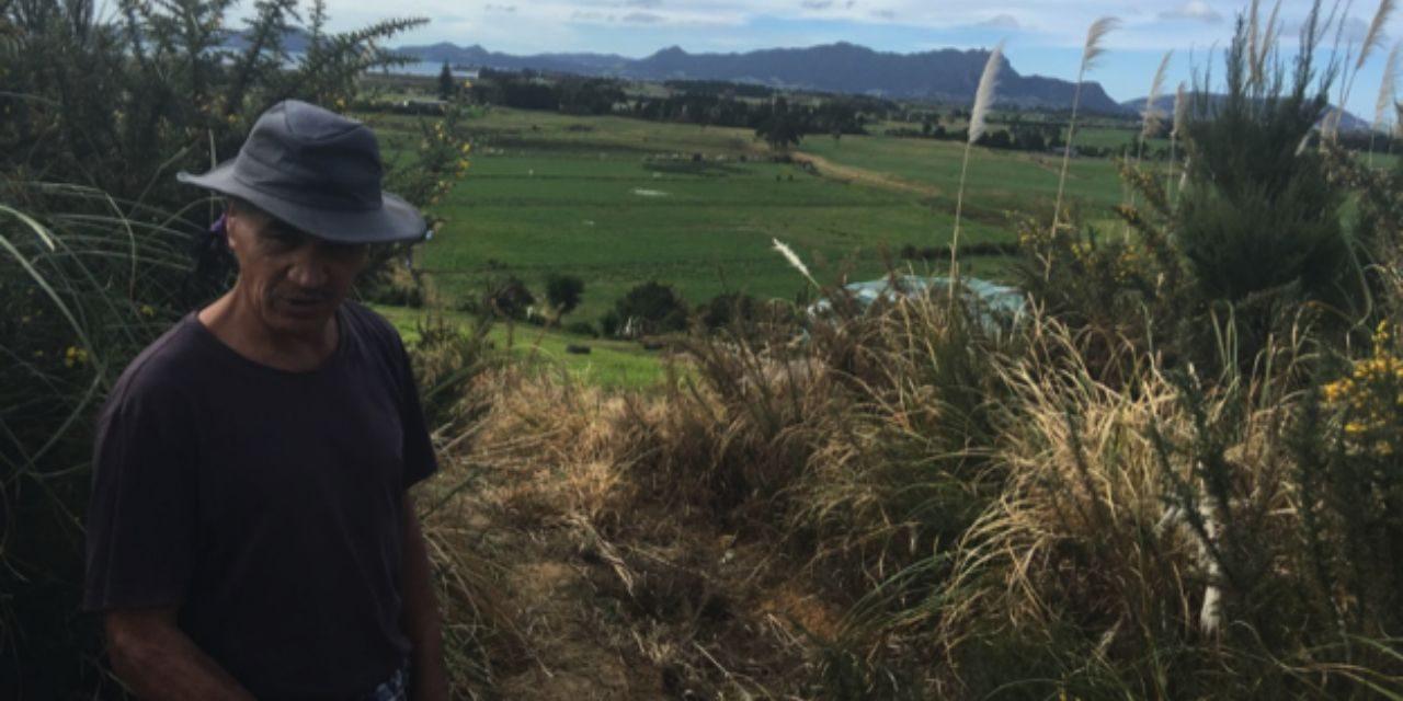 Stickman –  Director Rochelle Umaga